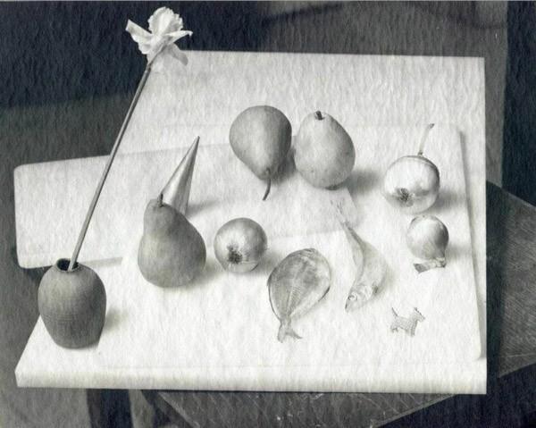 جین گروور، طبیعت بیجان