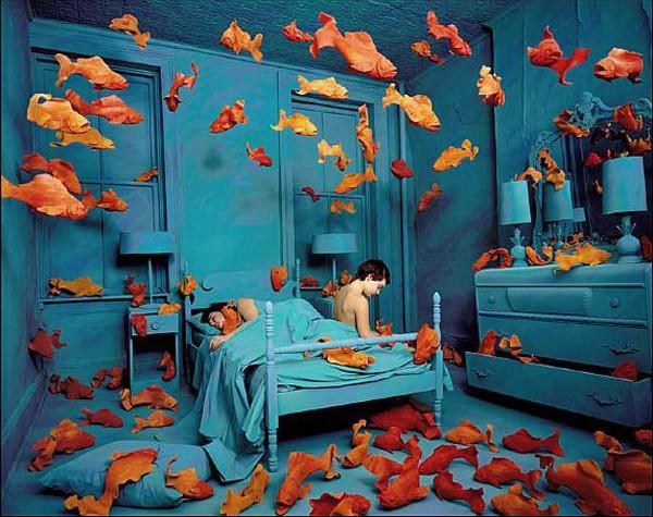 سندی اسکاگلند، انتقام ماهی قرمز، ۱۹۸۱
