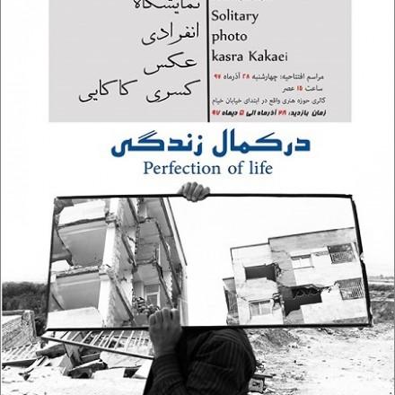 نمایشگاه «در کمال زندگی» کسری کاکایی در کرمانشاه