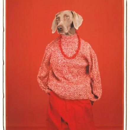 عکاسان معاصر جهان: مفهوم انسان بودن در آینهی سگهای ویلیام وگمن
