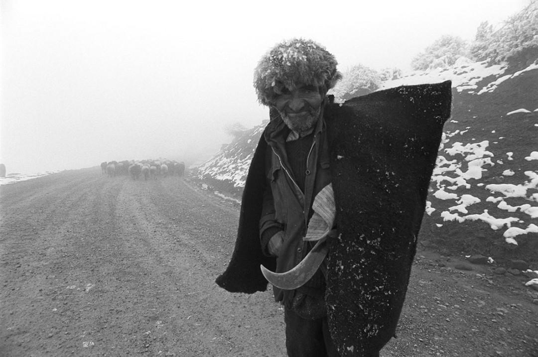 مراسم رونمایی از کتاب «بیگانه آشنا» بهمن جلالی در گالری راه ابریشم