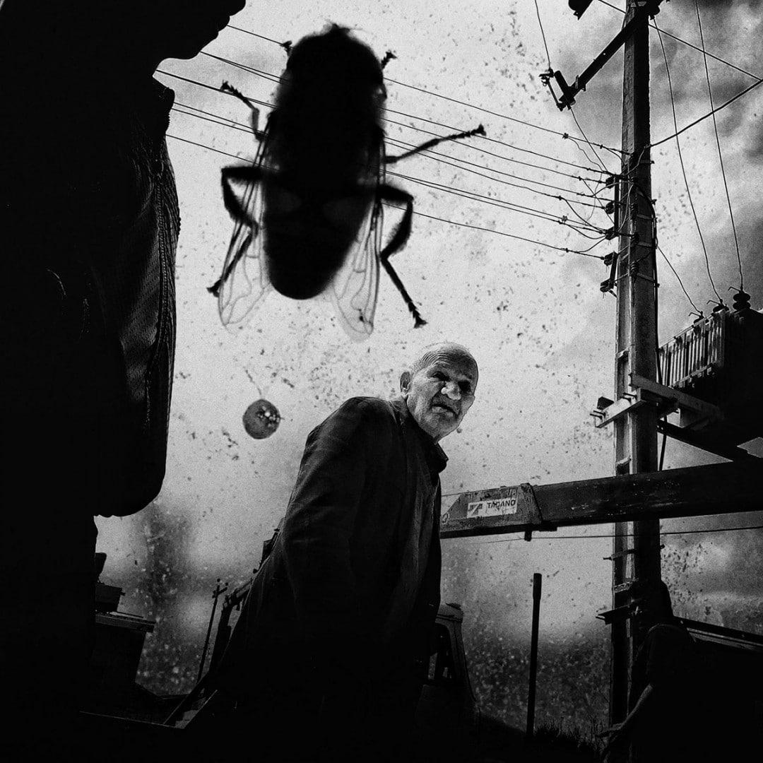 فراخوان مسابقه عکاسی خیابانی لنزکالچر ۲۰۲۰