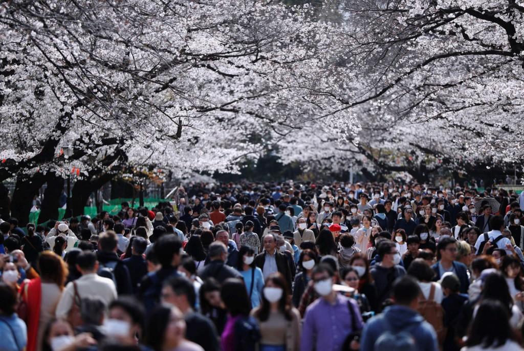Issei Kato از رویترز. گردشگران با ماسک در میان شکوفههای گیلاس پارک Ueno در توکیو، ژاپن. 22 مارس 2020