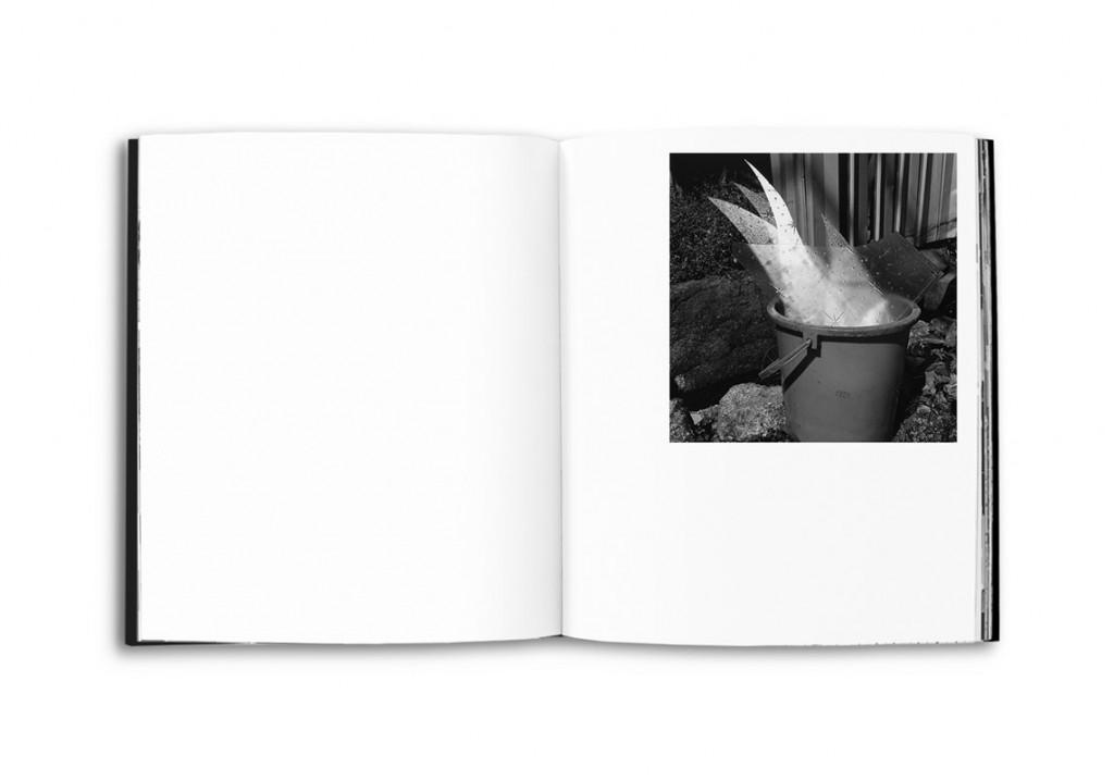 ایسه سودا، از کتاب 78