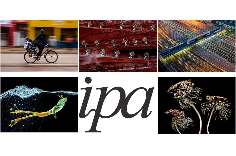 معرفی برندگان مسابقه عکاسی IPA 2020 – بخش تکعکس
