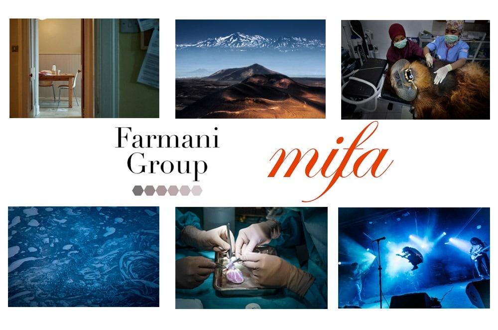 معرفی برندگان مسابقه عکاسی MIFA 2020