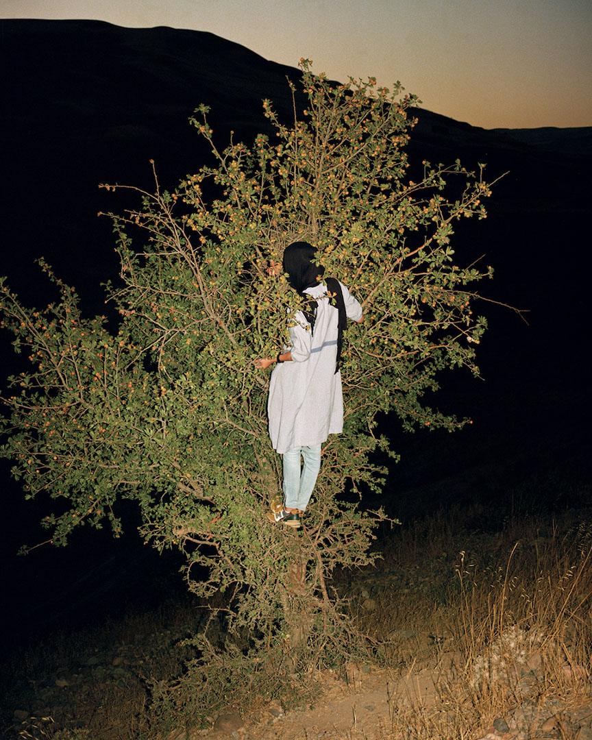 نگاهی به عکسهای سارا پنل از زندگی روزمره در ایران