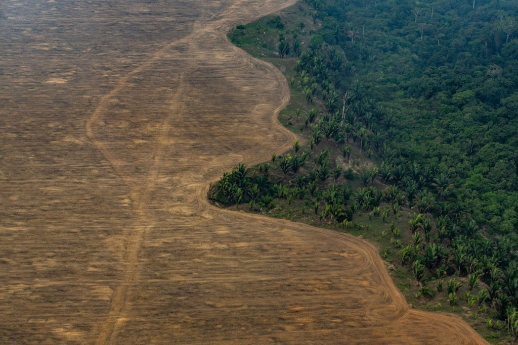 Victor Moriyama. از مجموعهی Amazon Deforestation
