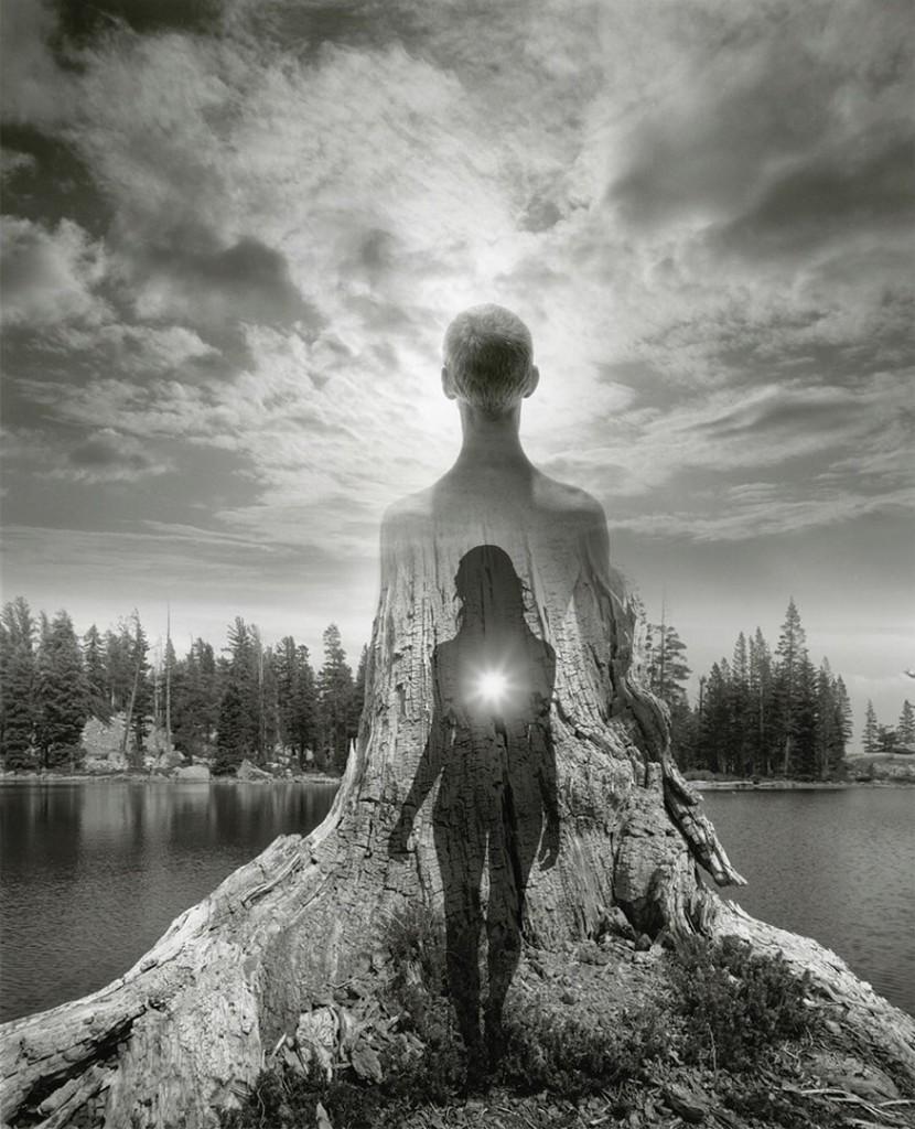 جری اوسمن. افسانهی درخت، 2016