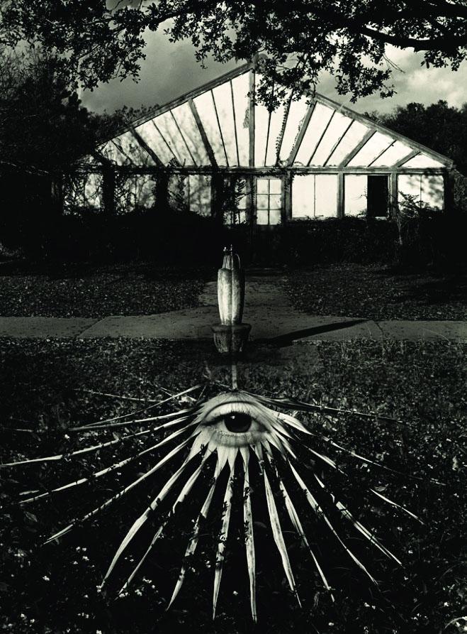 جری اولسمن. بدون عنوان، 1975