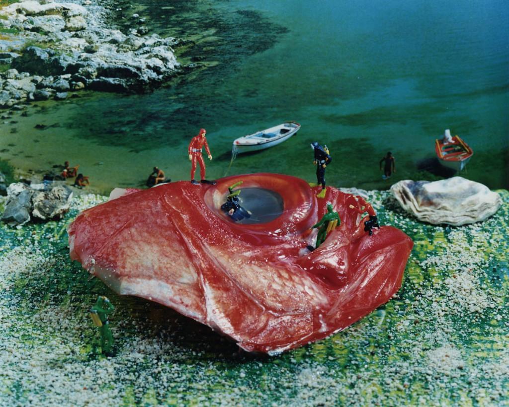 یومیکو اوتسو. غواصی درون ماهی آلفانسینو، 2007