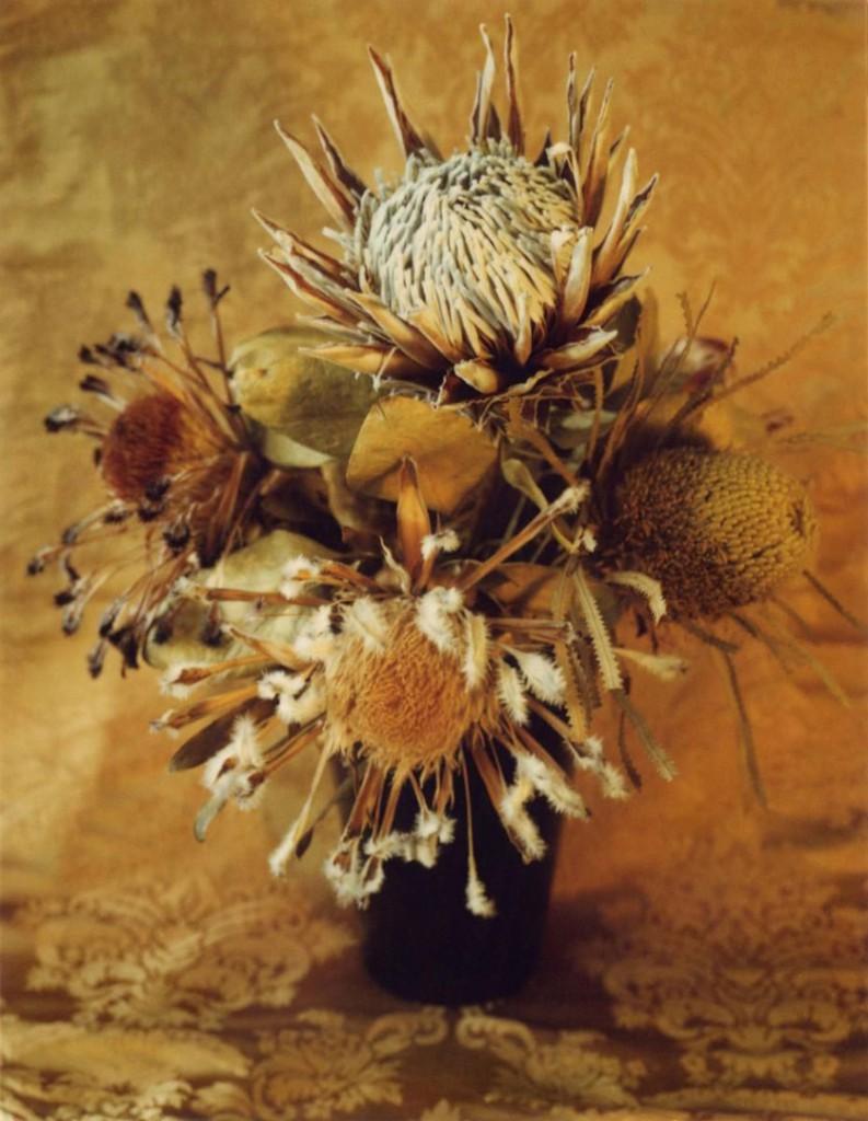 مری کسینداس. گل، حوالی 1962 – 1963، پلارید