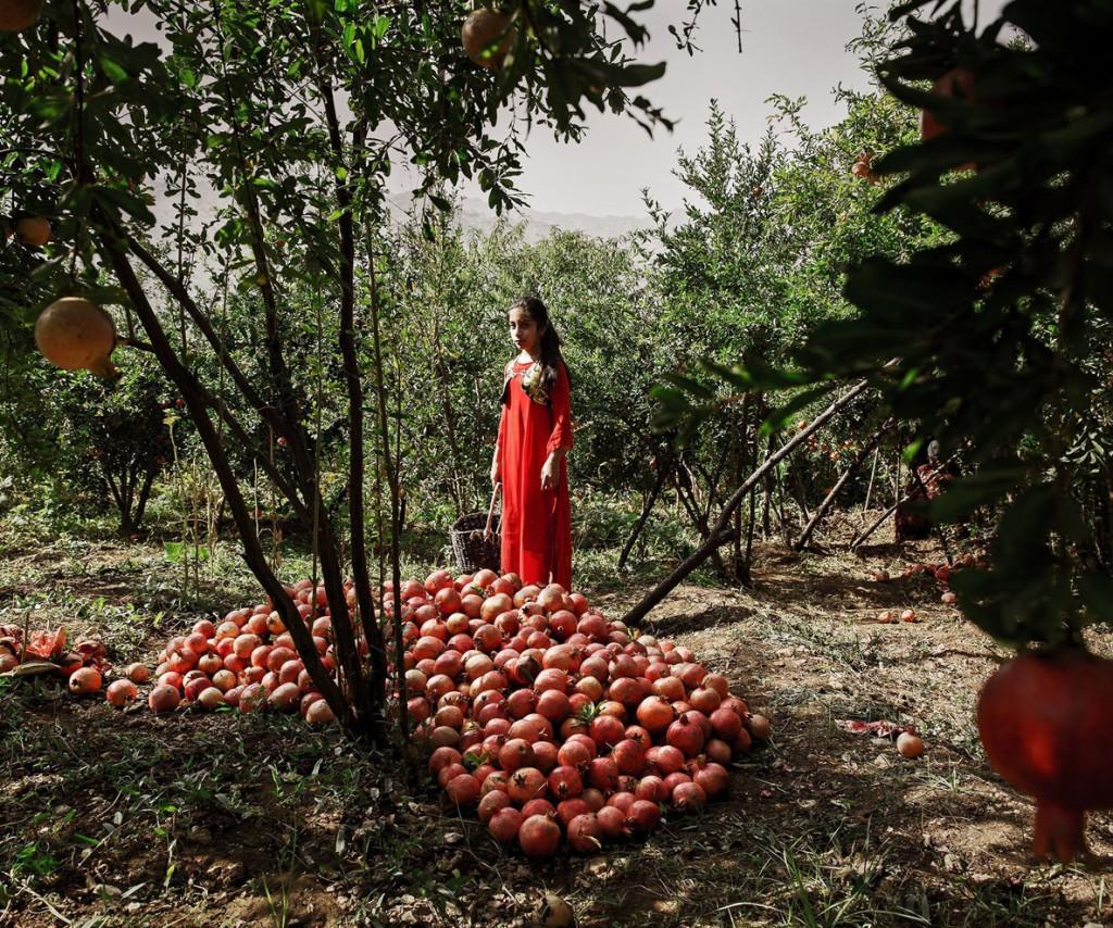 شهاب ناصری. باغبان جوان، از فینالیستهای مسابقه عکاسی سفر لنزکالچر 2020