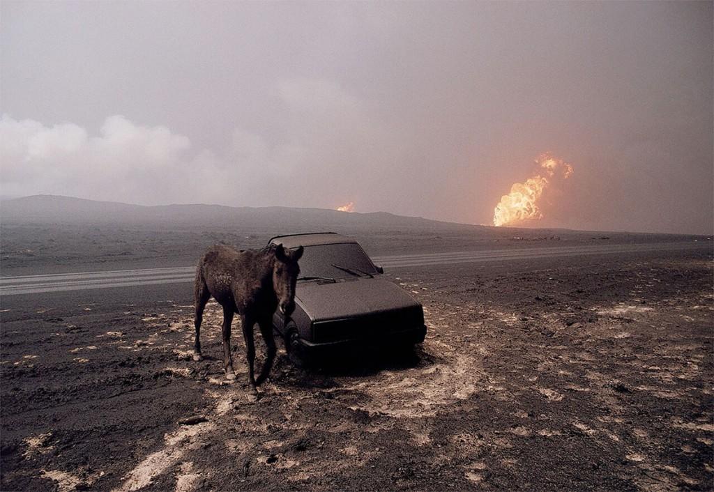 برونو باربی. کویت، 1991