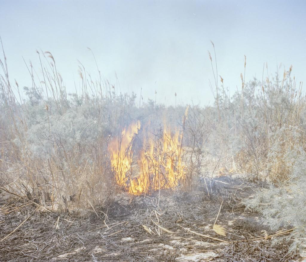 هاشم شاکری. از مجموعهی Elegy for the Death of Hamun آتشسوزی نیزارهای خشک در حوالی دریاچه هامون طی دوران خشکسالی