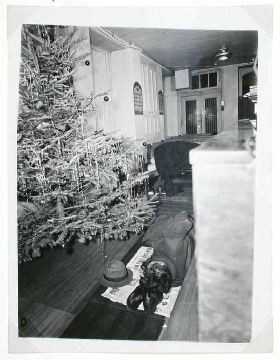 ویجی. مردی در کنار درخت کریسمس سرش را روی کفشهایش گذاشته و خوابیده، نیویورک
