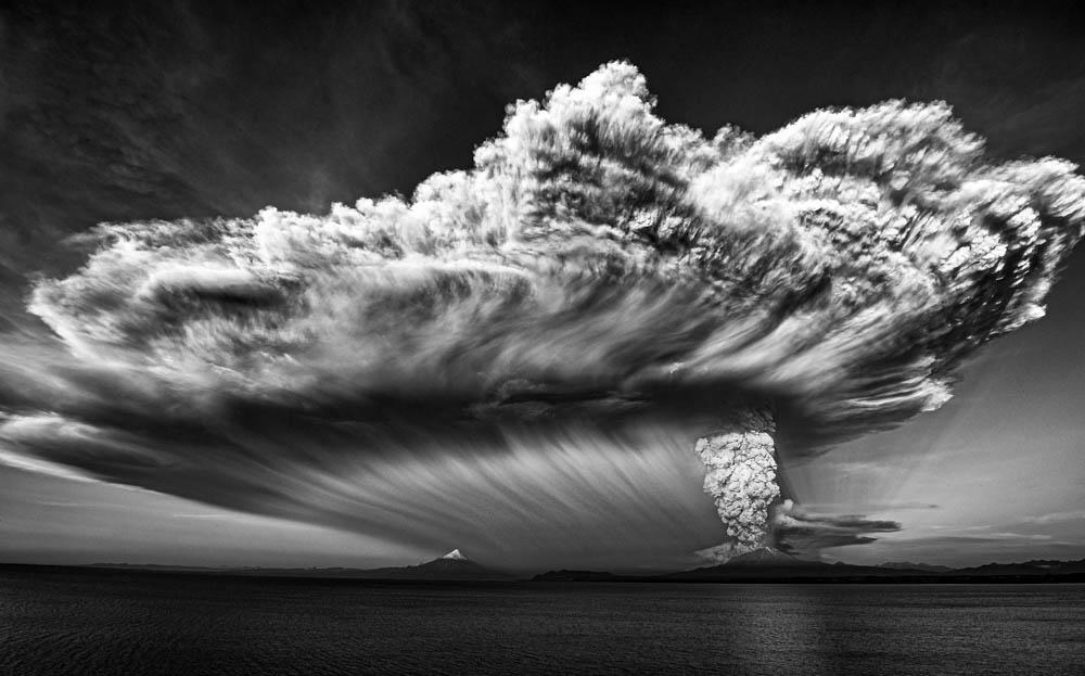 Cote Baeza از شیلی. مقام اول ژانر «طبیعت» بخش آماتور، در مسابقه عکاسی مونو کروم 2020