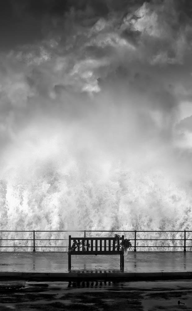 Mark Boyd. مقام دوم ژانر «طبیعت» بخش حرفهای، در مسابقه عکاسی مونو کروم 2020