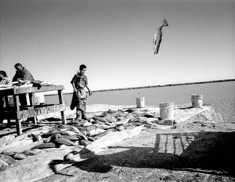 John Trotter. از مجموعه «نه آب، نه زندگی»، برنده «جایزه بزرگ» مسابقه عکاسی ISEM Prize 2018