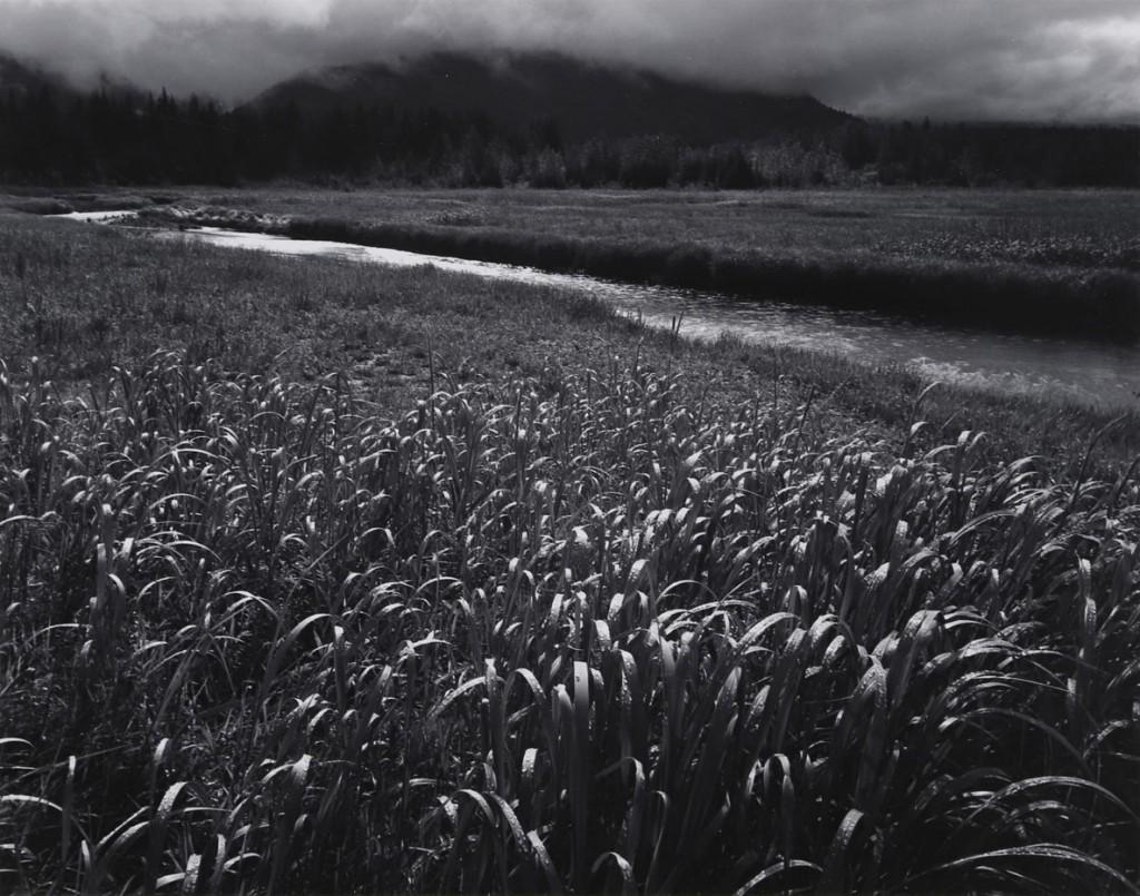 انسل آدامز. باران، شاخابهی بیرترَک، 1949
