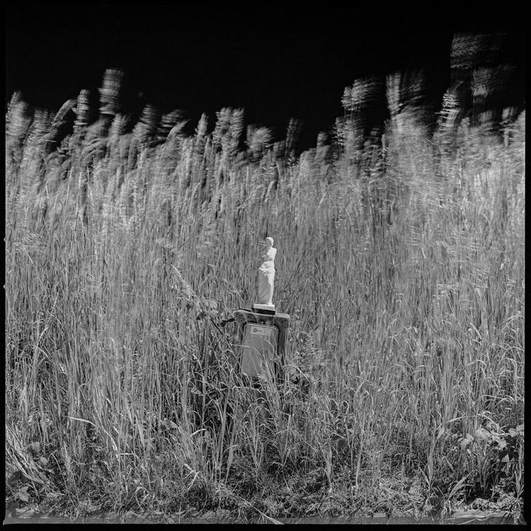 نمایشگاه آنلاین عکسهای ماهور زهرایی در وبسایت گالری راه ابریشم