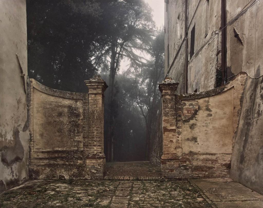 جوئل مایرویتس. قلعه، درختان در مه، تاسکانی، ایتالیا، 2002