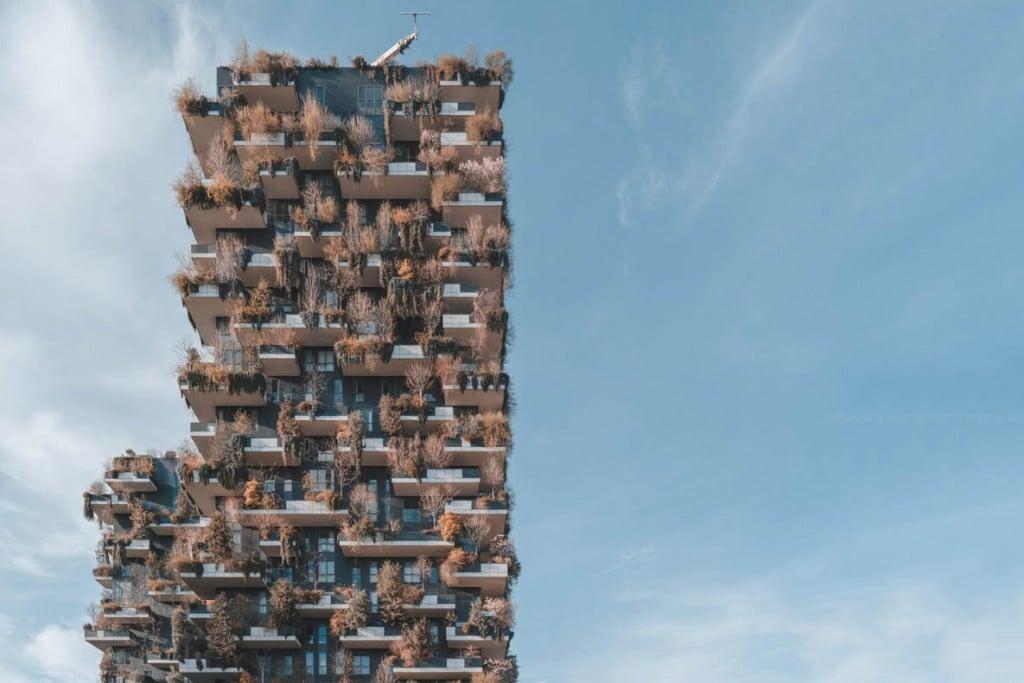 Alexey Kozhenkov. «شهر آینده»، از عکسهای منتخب مسابقه عکاس محیط زیست سال 2019
