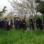 نگاه شخصی عکاسان جهان به بحران کرونا در نمایشگاه مجازی Confinement