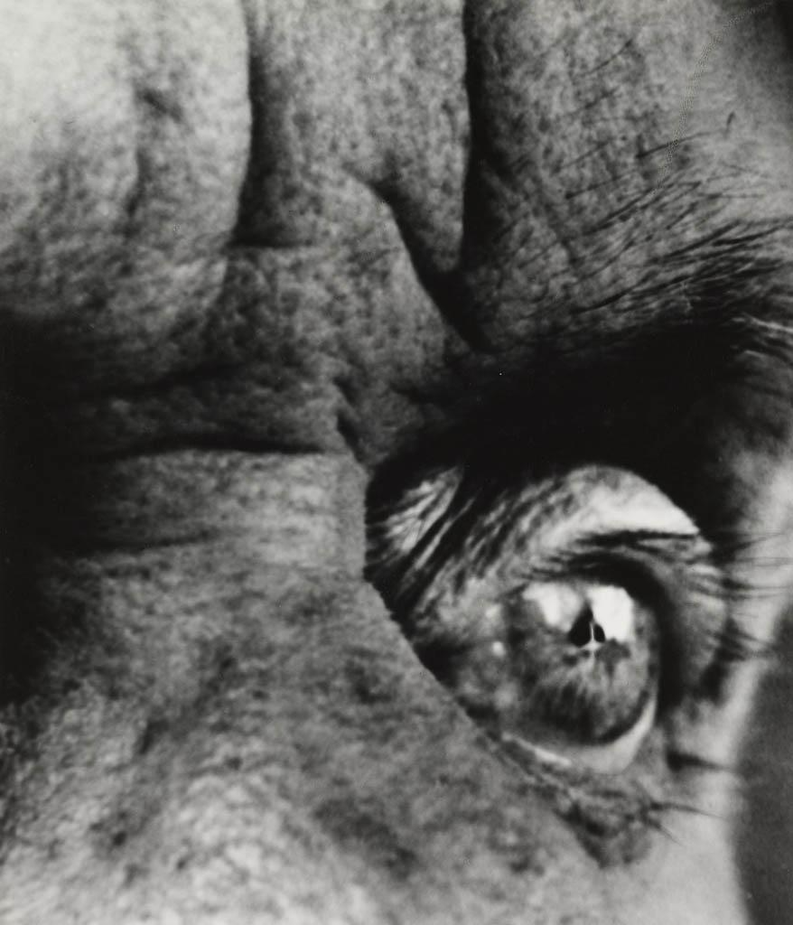 بیل برانت. «ماکس ارنست»، 1963