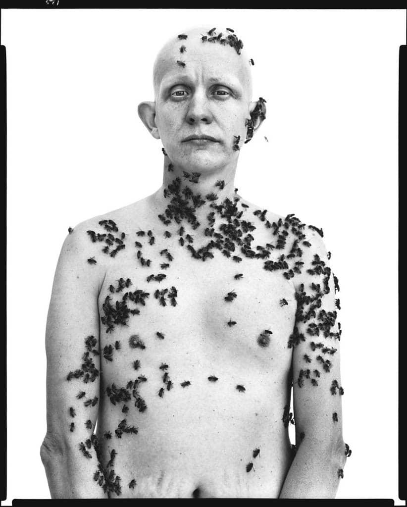 ریچارد اودان. «رونالد فیشر، زنبوردار، دیویس، کلیفرنیا»، 9 می 1981