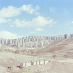 درخشش عکاسان ایرانی در مسابقه بینالمللی عکاسی لنزکالچر خانه ۲۰۲۱