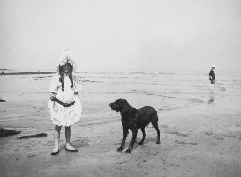 ژاک آنری لارتیگ. ساحل ویلِرویل، 1906