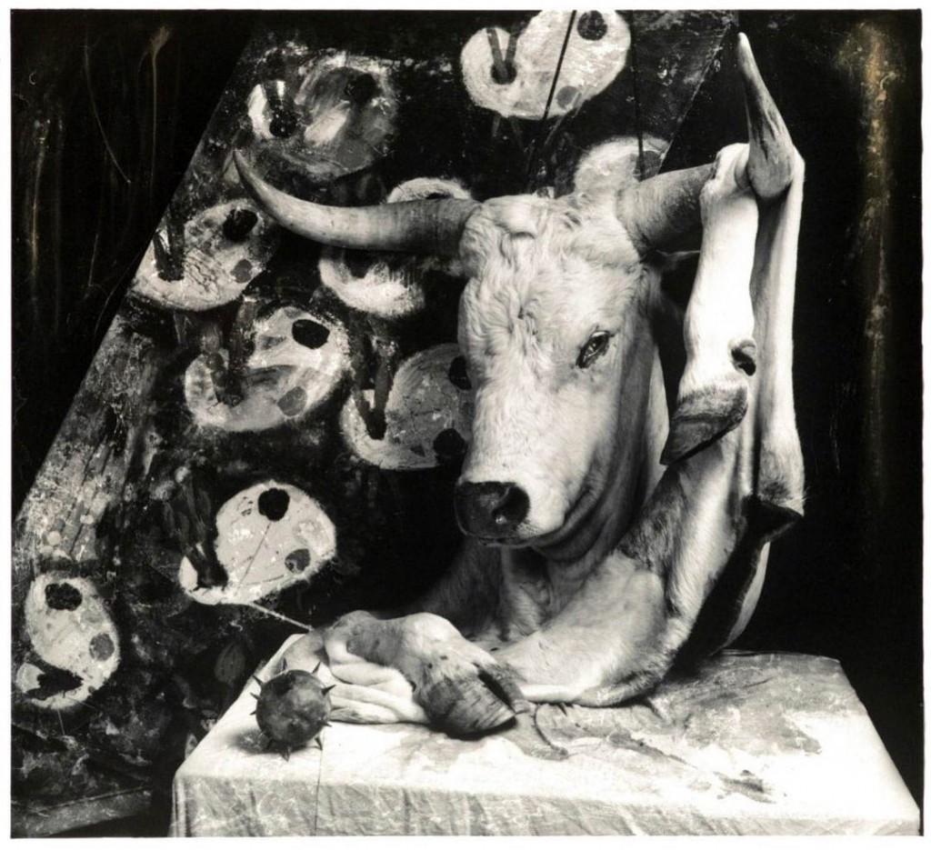 جوئل پیتر ویتکین. «پوچی»، 1990