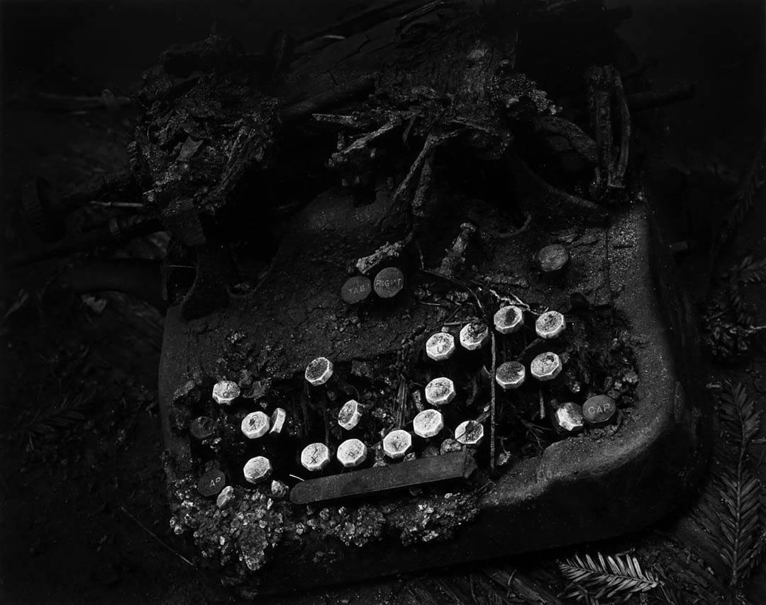 قدرت عکاسی: وین بولاک، قدرت زمان